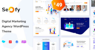 Seofy-v1.0.3-Digital-Marketing-Agency-WordPress-Theme